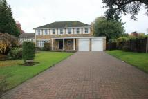 5 bed Terraced house to rent in Horsell