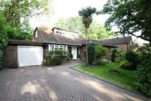 Chalet to rent in Pyrford