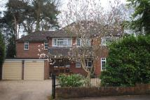 Onslow Crescent Detached property to rent