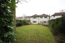 Woodham property to rent