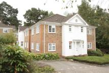 1 bed Apartment to rent in Camberley
