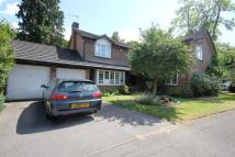 5 bedroom Detached home in Weybridge