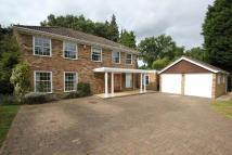 4 bed Detached home in Pyrford