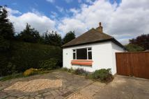 Detached Bungalow in Ickenham, Uxbridge, UB10