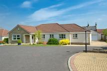 Detached Bungalow in 2 Langton Steadings...