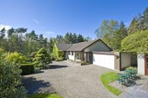4 bed Detached Bungalow in Inwood, by Inveresk...