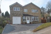 Detached property in Meadow Close...