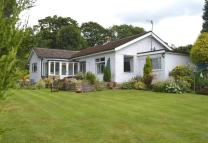 3 bed Bungalow in The Avenue, Combs