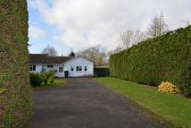 Binton Road Bungalow to rent