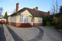 Bungalow to rent in Loxley Road...