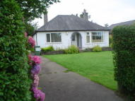 Detached Bungalow in Scaw Road...