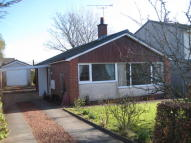 Cedar Lane Detached Bungalow for sale
