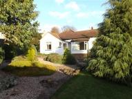 Bungalow to rent in High Street, Whitwell...