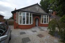Manchester Road Detached Bungalow to rent