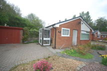 3 bedroom Detached Bungalow to rent in Carr Field...