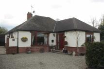 3 bedroom Detached Bungalow for sale in Shepherds Lane...