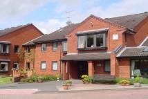 Studio flat to rent in Mill Lane, DY7