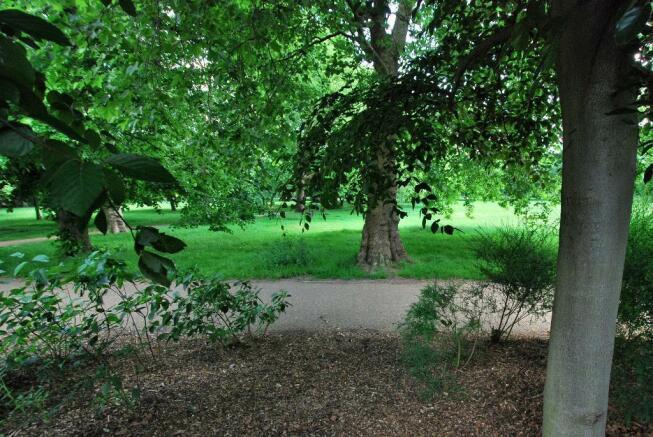 Walpole Park to Rear