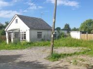 Sunnyside Detached Bungalow for sale