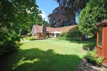 3 bed Bungalow for sale in Lower Machen, Newport...