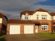 4 bedroom Detached home for sale in THE OAKS, WEST CORNFORTH...