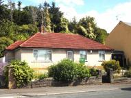 113 Andrew Road Detached Bungalow for sale