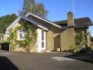 Detached Bungalow for sale in Old Lane, Abersychan