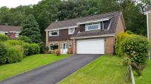 Detached house for sale in Glade Close, Coed Eva...