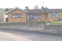Springfield Drive Semi-Detached Bungalow to rent
