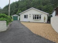 Glanyafon Bungalow Detached Bungalow for sale