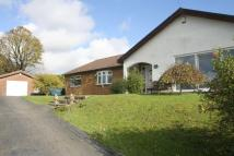 Detached Bungalow for sale in The Rear Of Field Street...