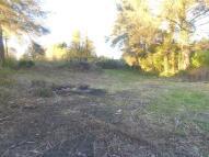 Tynewydd Land