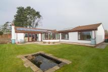 Wellfield Court Detached Bungalow for sale