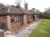 Detached Bungalow in Cnap Llwyd Road...