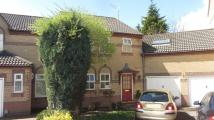 5 bed semi detached property in Langham Way...