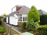 Detached Bungalow to rent in Lon Y Deri, Rhiwbina...