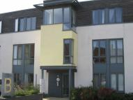 1 bed Flat to rent in Samuels Crescent...