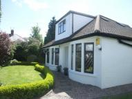 4 bed Detached Bungalow in Heol Ifor, Cardiff