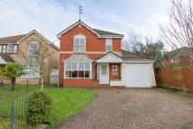 4 bedroom Detached property in Maes Yr Odyn...