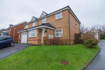 semi detached home for sale in Maes Yr Orchis...