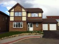 Detached home for sale in Cedar Rd, Eglwys Brewis...