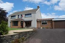 Detached house to rent in Crown Lane, The Bryn...