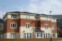 Flat to rent in Coed Celynen Drive...