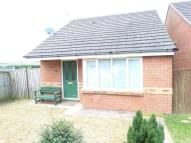 Detached Bungalow in THE SPINNEY...