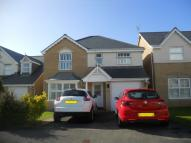 Detached property to rent in Maes Tal Coed...