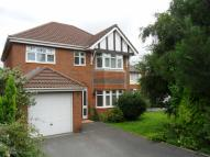 4 bedroom Detached home to rent in Llwyn Y Groes...