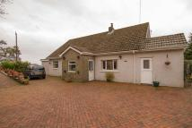 Detached Bungalow in Heol Spencer, Coity...