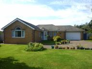 Detached Bungalow for sale in Birchwood Gardens...