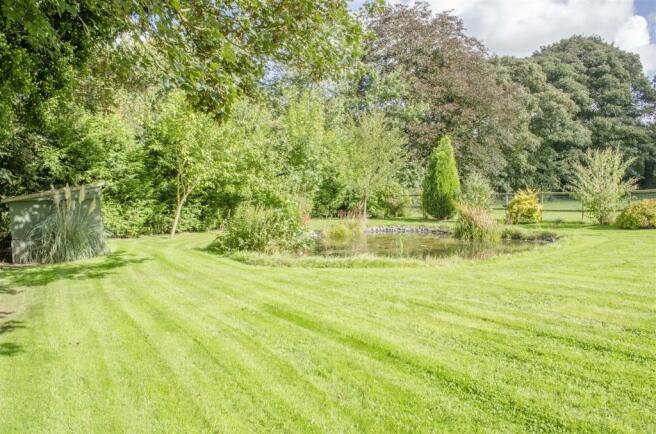 Garden / Pond
