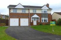 Detached property for sale in Parc Nant Celyn...